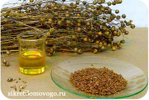 лен, семя льна, льняное масло