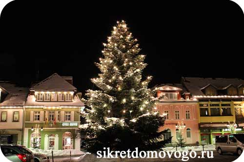 рождественская елка в городе