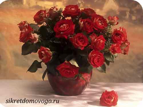 как сохранить розу в  вазе дольше
