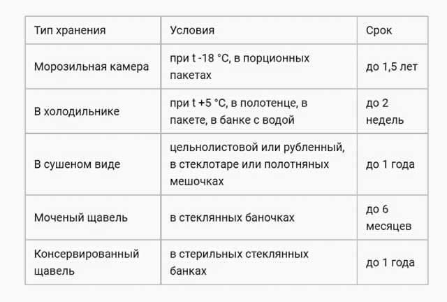 таблица хранения щавеля